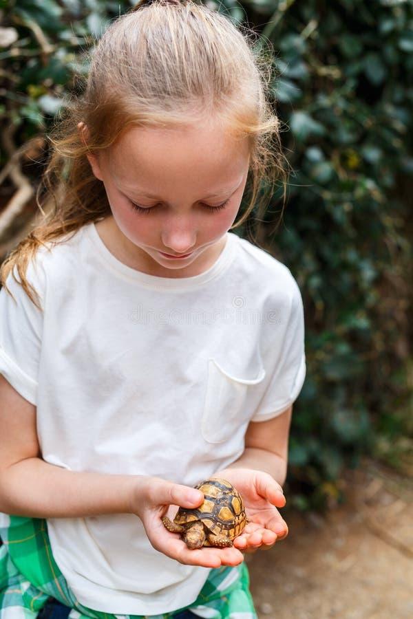 Det gulliga flickainnehavet behandla som ett barn sköldpaddan arkivbild