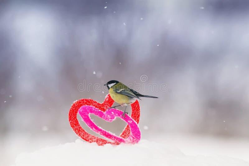 Det gulliga valentins dagkortet med fågeln är på gränsen av två stack dekorativa beståndsdelar som hjärtor är i snön royaltyfria foton