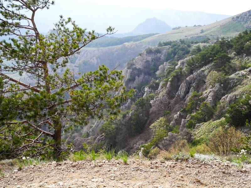 Det härliga berglandskapet med farligt med att slutta vaggar i vår Gröna träd på vaggar Bergskedjor i en blå ogenomskinlighet arkivbild