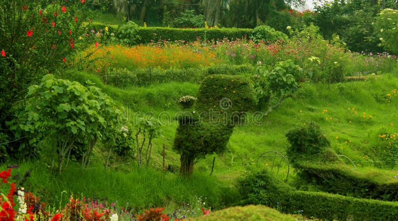 Det härliga gröna fältet i den chettiar kodaikanalen parkerar royaltyfria bilder