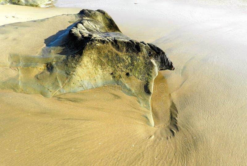 Det härliga havet vaggar arkivfoto