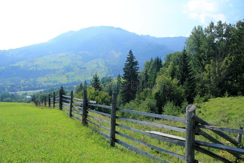 Det härliga landskapet med sikt till trästaketet, betar, skog a arkivbilder