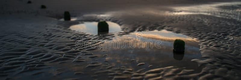 Det härliga soluppgångpanoramalandskapet reflekterade i tips på stranden royaltyfria foton