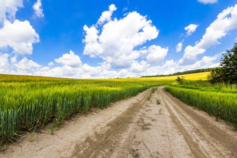 Det härliga sommarlandskapet med grönt gräs, smutsgrusvägen och vit fördunklar arkivfoto