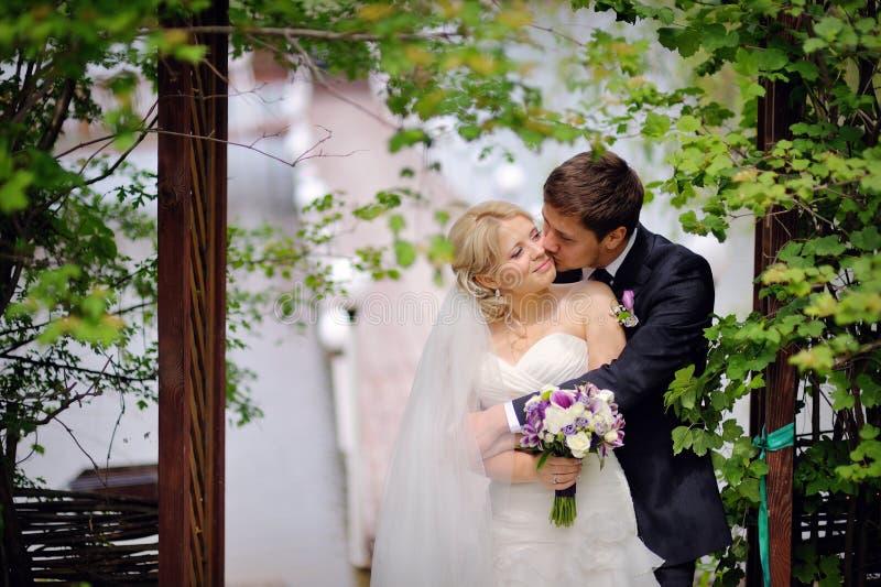 Det härliga unga brud- och brudgumanseendet i en parkera rymmer utomhus royaltyfri foto
