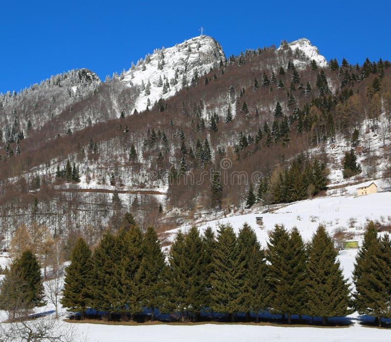 det höga berget kallade SPITZ i vinter i nordliga Italien arkivfoto