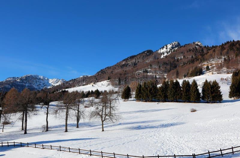 det höga berget kallade SPITZ med insnöad vinter i nordliga Ital arkivfoto