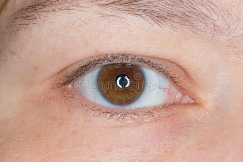 Det högra ögat av en kvinna Slut som skjutas upp arkivfoto
