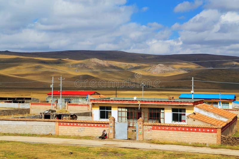 Det höstliga landskapet av den Qinghai - Tibet platån arkivbild