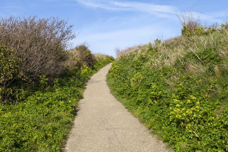 Det Hastings landet parkerar naturreserven arkivbilder