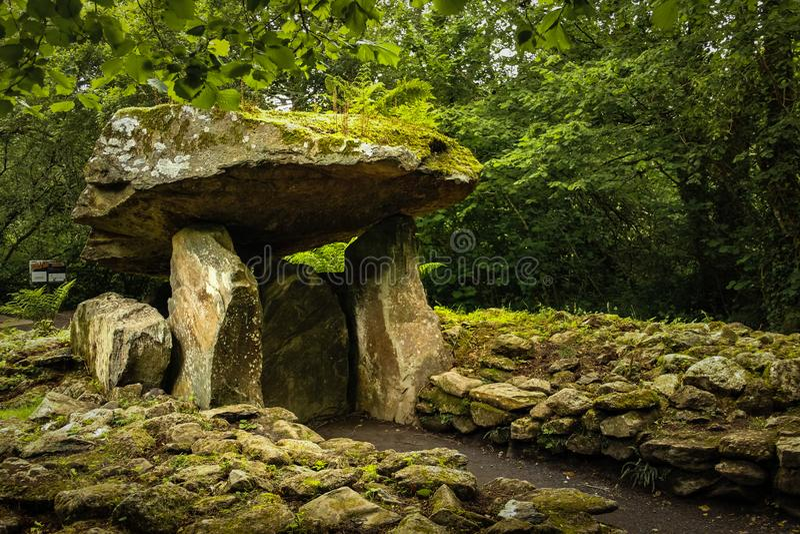 Det irländska nationella arvet parkerar Wexford ireland royaltyfri foto