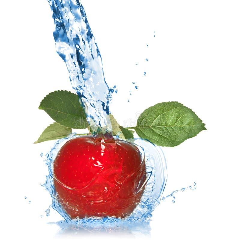 det isolerade äpplet låter vara rött färgstänkvatten arkivbilder