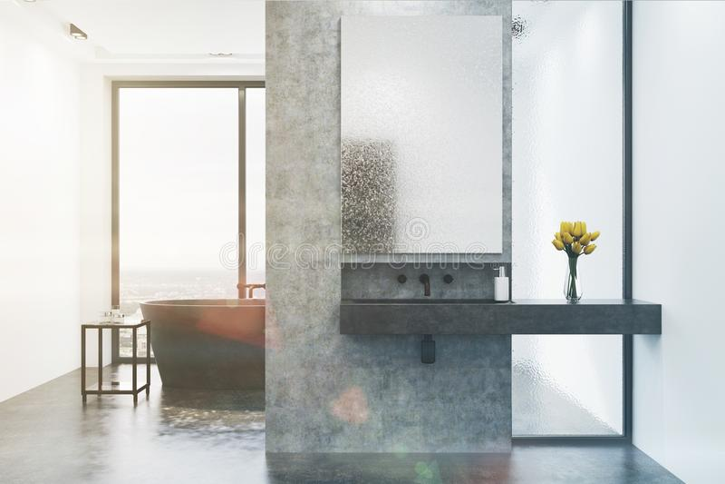 Det konkreta badrummet, grå färg badar och sjunker tonat royaltyfri illustrationer