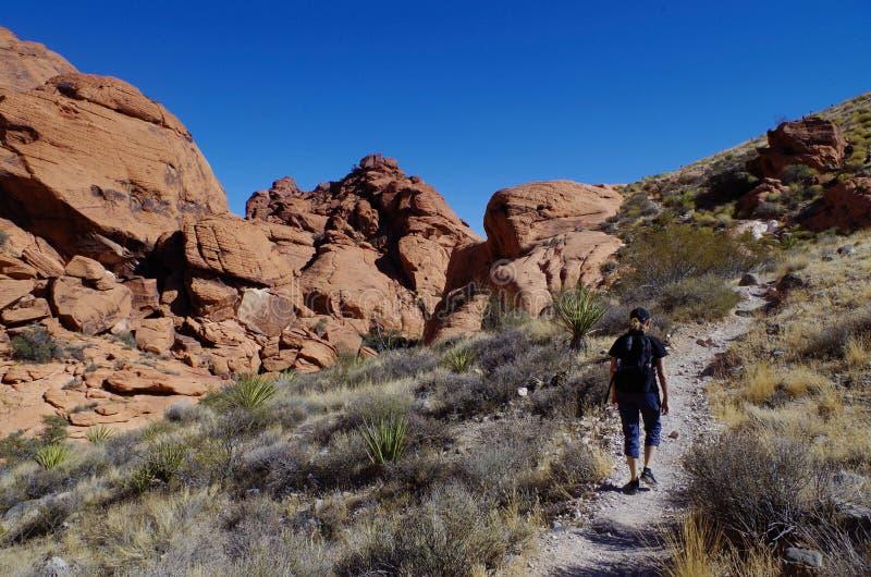 Det Kraft berget som är rött vaggar naturvårdsområde, sydliga Nevada, USA royaltyfri bild