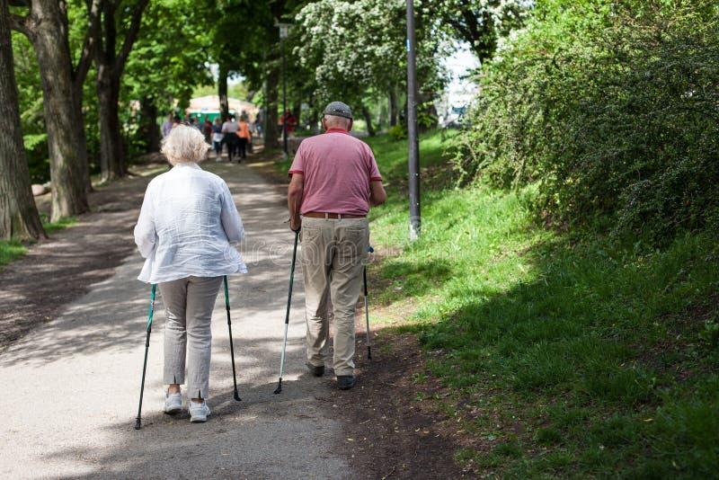 Det kraftiga lyckliga äldre folket går med att fotvandra pinnar, rottingar arkivfoto