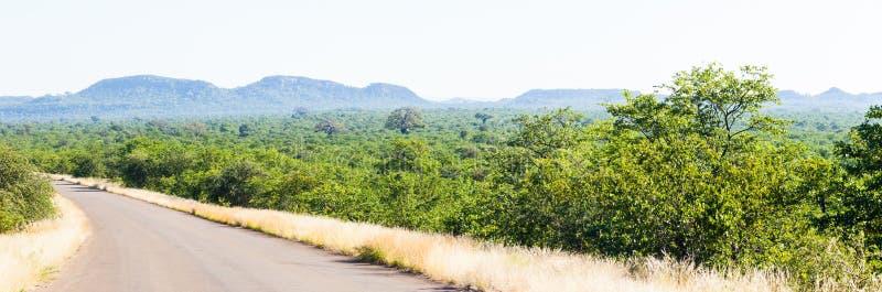 Det lösa och avlägsna området av den norr krugeren parkerar, Sydafrika fotografering för bildbyråer