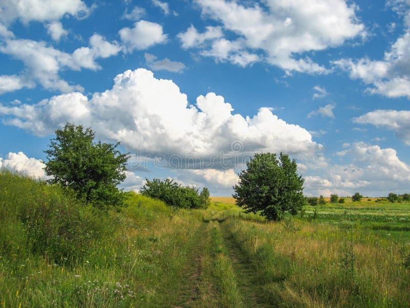 Det lantliga landskapet för sommar under härliga moln royaltyfria foton