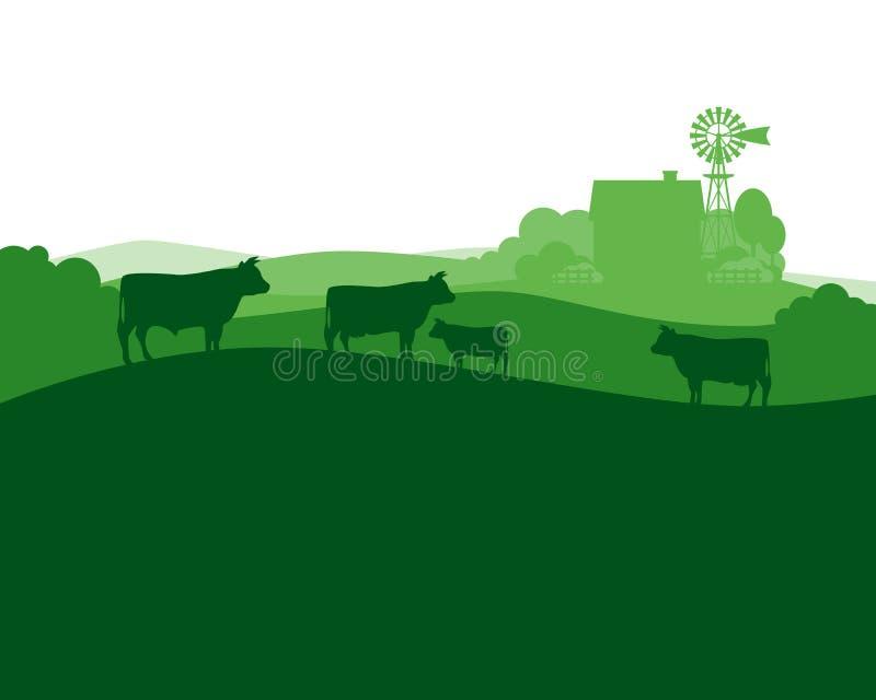 Det lantliga landskapet med mjölkar lantgården och samlas kor royaltyfri illustrationer