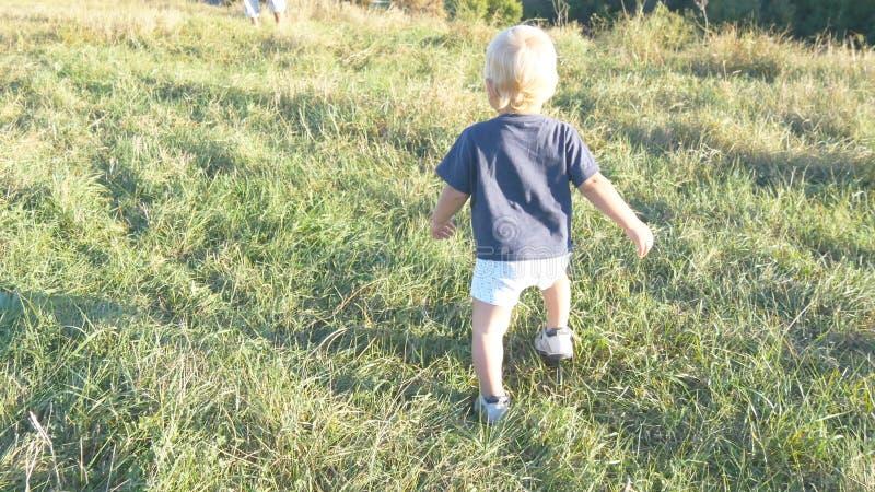 Det lilla barnet går på grönt gräs på fältet till hans fader på den soliga dagen Lycklig familj på en sommaräng behandla som ett  arkivbild