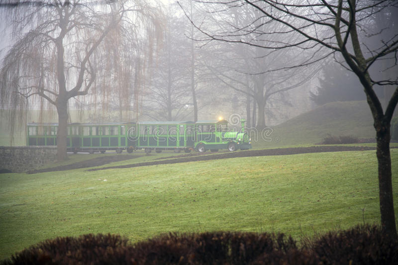 Det lilla gröna drevet i höst parkerar arkivfoton