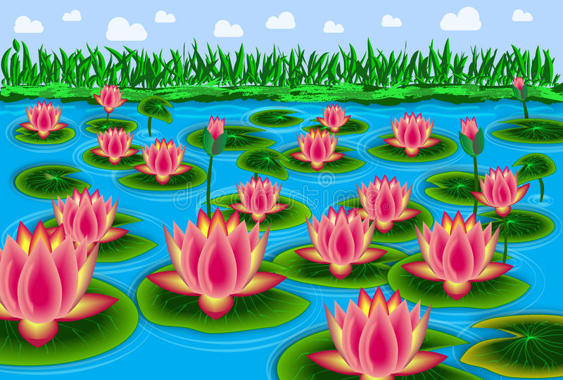 Det Lotus dammet med blå himmel och vit fördunklar royaltyfri fotografi