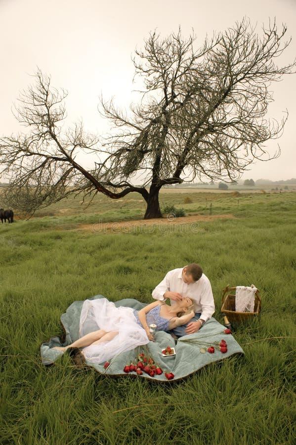 Det lyckliga barnet kopplar ihop att ha en romantisk picknick utomhus i grönt fält arkivbild