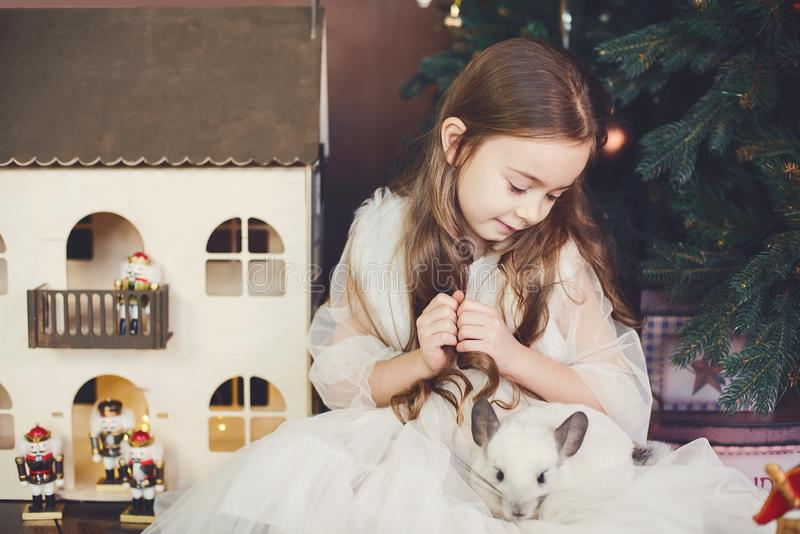 Det lyckliga kinesiska nya året tjaller 2020 år av Stående av den gulliga vita chinchillan på bakgrunden av julgranen arkivfoton