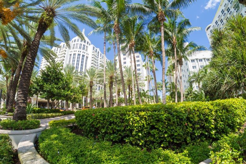 Det lyxiga Loews Miami Beach hotellet i Miami Beach royaltyfria foton