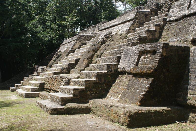Det Mayan fördärvar av Lamanai arkivbilder