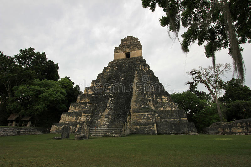 Det mayan fördärvar Tikal Guatemala royaltyfri foto