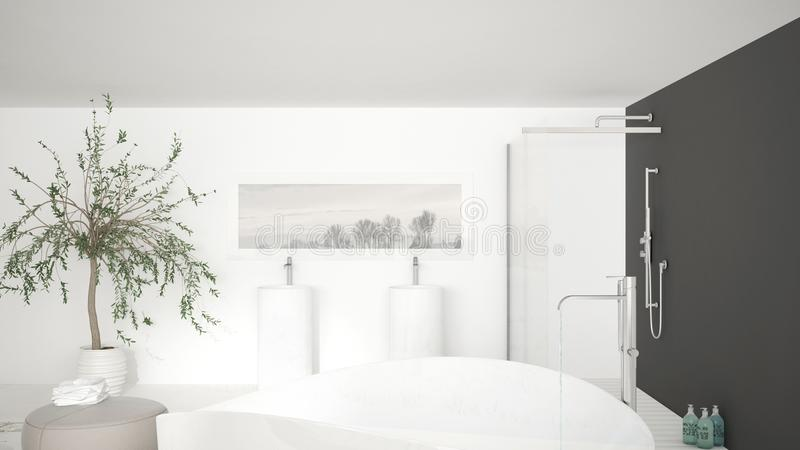 Det moderna klassiska badrumslutet upp på stort bad badar, stor dusch a royaltyfri illustrationer