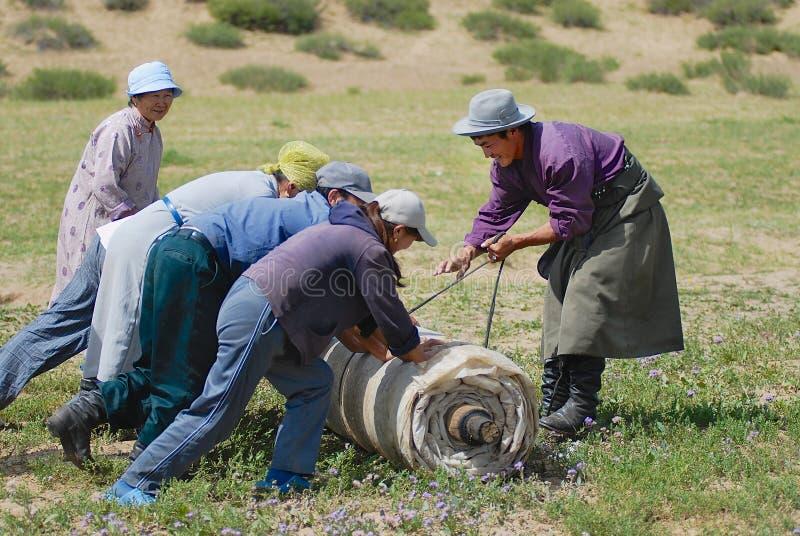 Det mongoliska folket rullar filt i stäpp i Harhorin, Mongoliet arkivbild