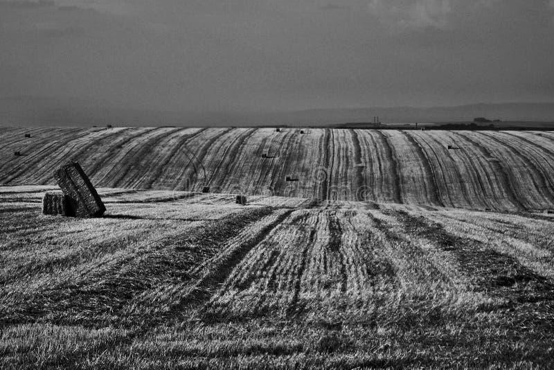 Det Moravian fältet på Hanà ¡, arkivfoton
