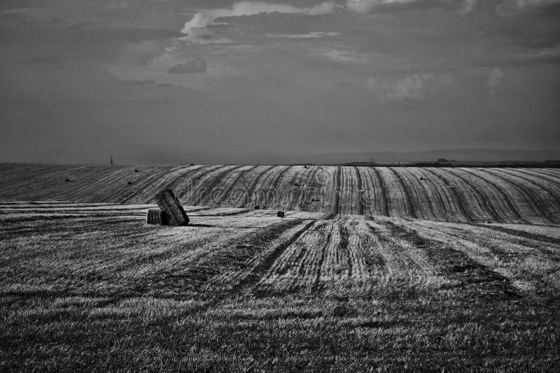 Det Moravian fältet på Hanà ¡, arkivbild