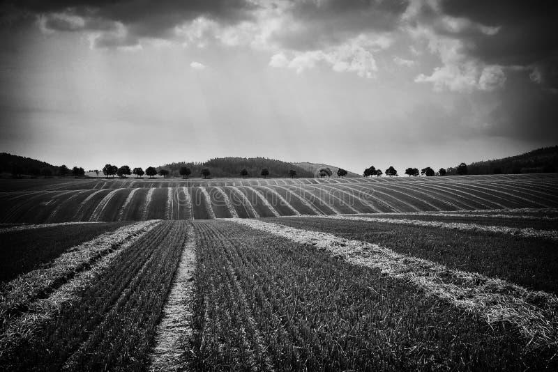 Det Moravian fältet på Hanà ¡, royaltyfri foto