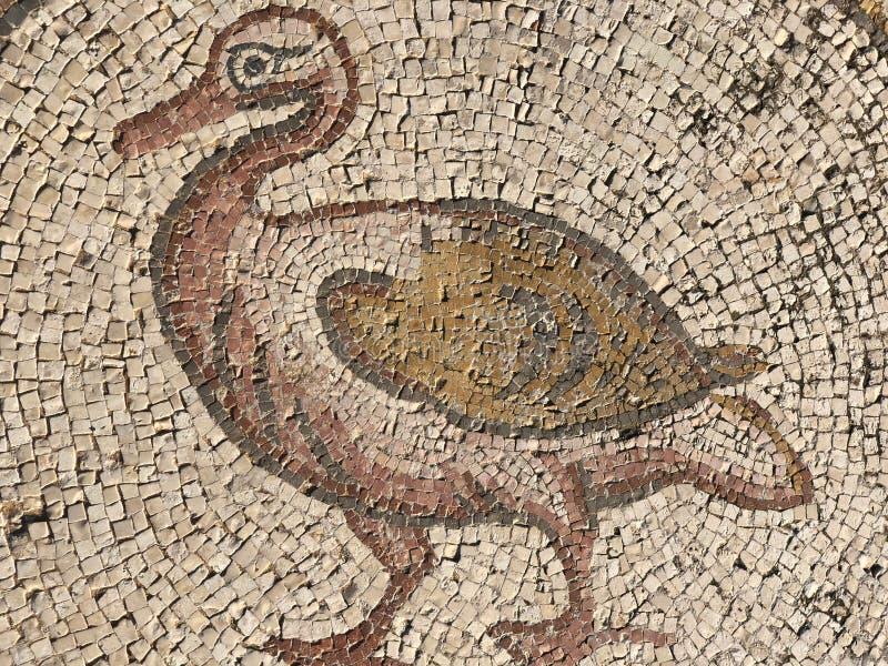 Det mosaiska golvet för fågel i Caesarea, Israel arkivbilder