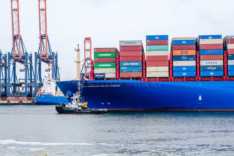 Det mycket stora behållareskeppet seglar till och med Nieuwen Waterweg till porten av Rotterdam royaltyfria foton