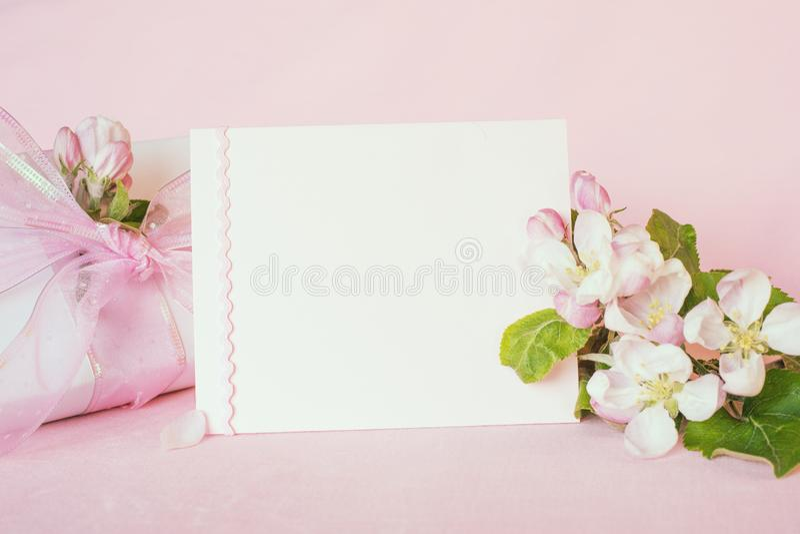 Det nätta pastellfärgade rosa banret med det tomma kortet och nya våräppleblomningar med den slågna in gåvan för moderdag, födels royaltyfri foto