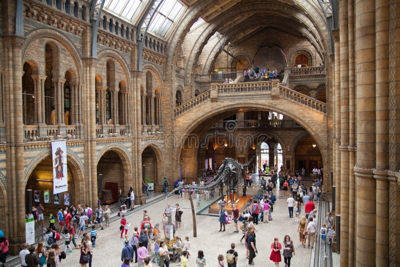 Det nationella historiemuseet, är ett av det mest favorit- museet för familjer i London royaltyfri fotografi