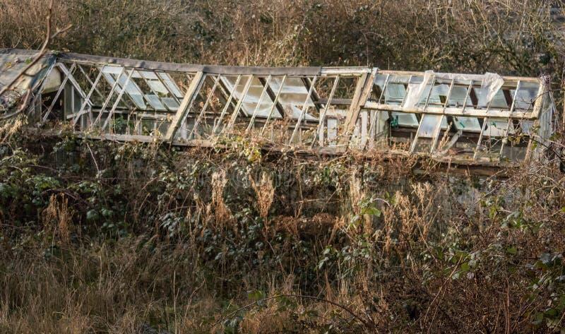 Det negllected växthuset arkivbild