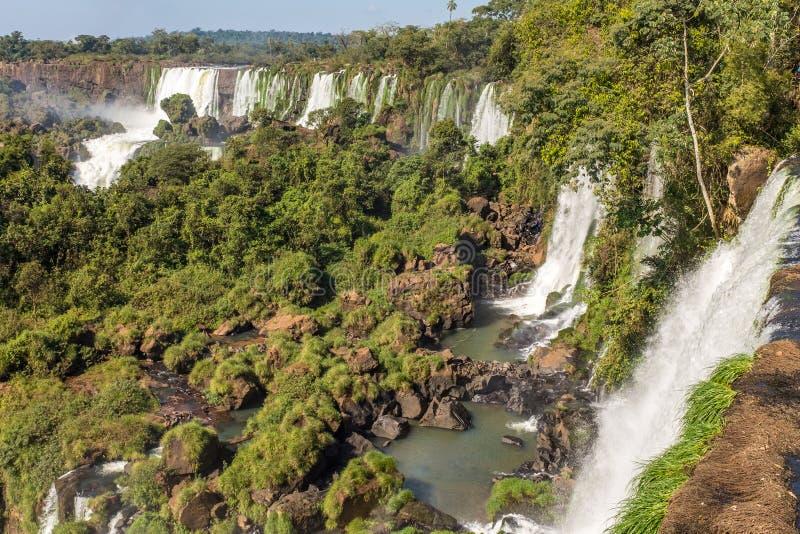Det oerhörda och majestätiska Iguazuet Falls, åtskilliga vattenfall utgör denna UNESCOvärldsarv som ses från argentinaren royaltyfria bilder