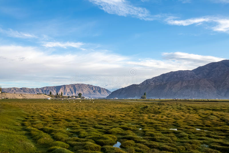 Det Pamirs landskapet royaltyfri foto