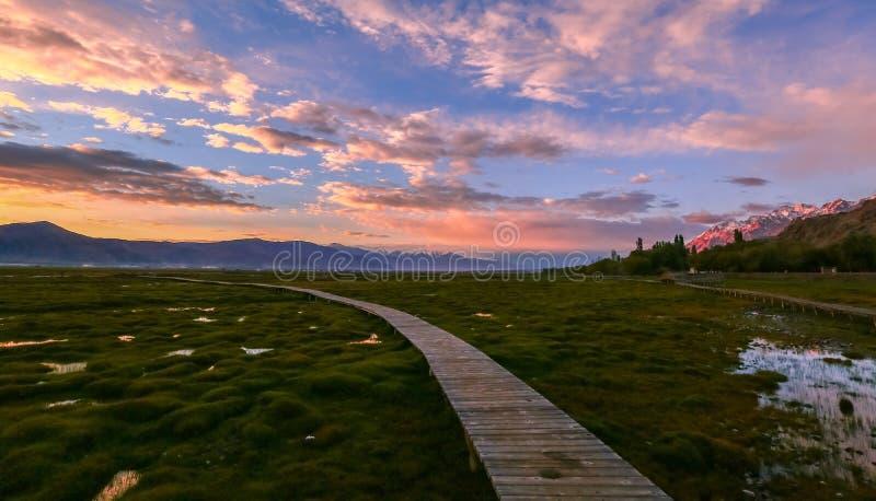Det Pamirs landskapet fotografering för bildbyråer