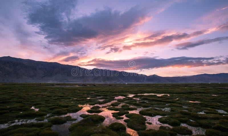 Det Pamirs landskapet royaltyfri fotografi