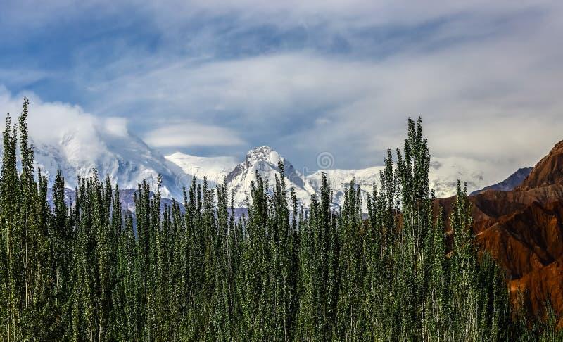 Det Pamirs landskapet arkivbild