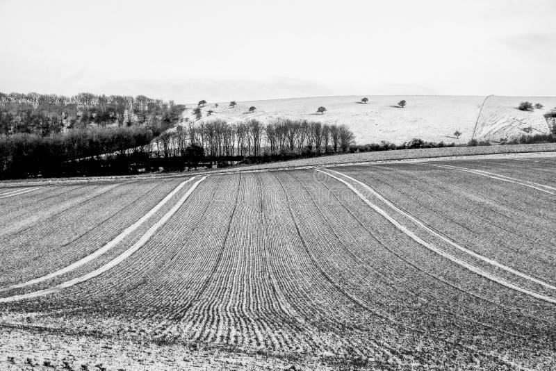 Det plöjde fältet som täckas i frost i söderna, besegrar nationalparken, Förenade kungariket arkivfoton