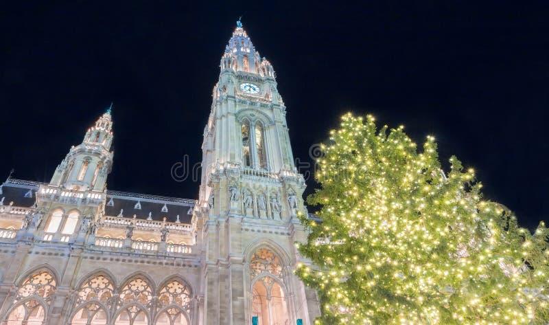 Det Rathaus stadshuset av Wien och julgranen, Österrike royaltyfria bilder