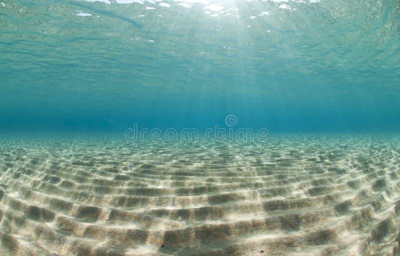 det reflekterade golvhav ripples solljus royaltyfri bild