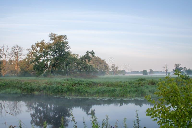 Det Rogalin landskapet parkerar - oxbowsjön med gamla ekar i misten för soluppgång royaltyfria foton