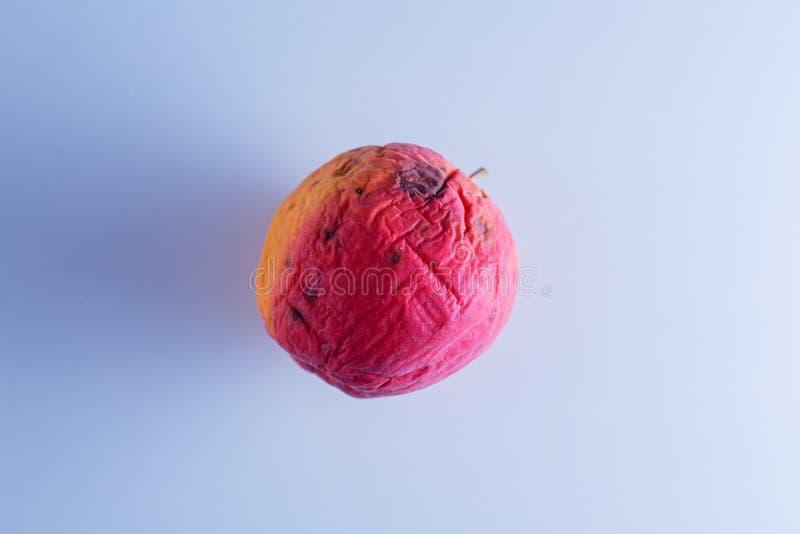 Det Rotte äpplet är blicken som torr hud royaltyfri bild